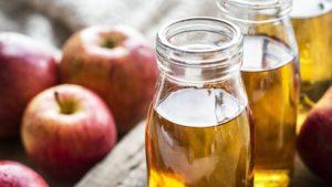 Bacteria In Vinegar