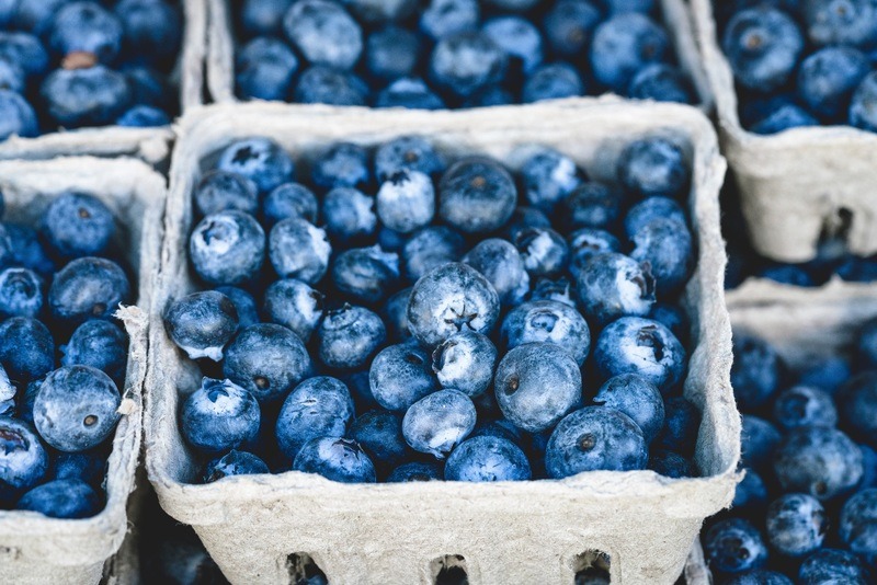 fermented blueberries