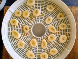 Dehydrating Banana In A Dehydrator