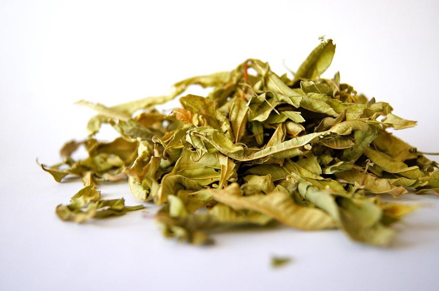 Temperature To Dehydrate Herbs